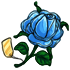 Blue Valentine Rose