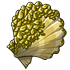 Gold Encrusted Shell