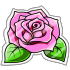 Pink Rose Sticker