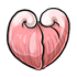 Pink Heart Clam