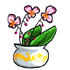 Potted Elegant Plant